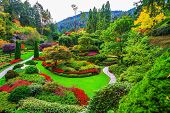 Постер, плакат: Butchart Gardens gardens on Vancouver Island Flower beds of colorful flowers and walking paths f