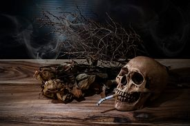 foto of tobacco smoke  - Still life Smoking human skull with cigarette on wooden table people smoke cigarette look like trying to commit suicide In the day  - JPG