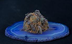 image of agate  - Close up macro of Indica Strain purple medicinal medical marijuana on purple agate - JPG