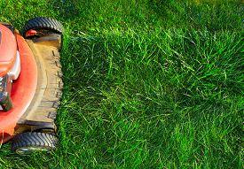 pic of grass-cutter  - Lawn mower cutting green grass - JPG