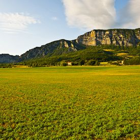 stock photo of farmhouse  - Farmhouse Surrounded by Fields in the French Alps - JPG