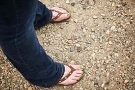 image of painted toes  - a girl wearing brown leather flip flop sandals on her feet with little rhinestone jewels on the straps with green nail polish and flowers painted on her big toes - JPG