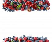 berry poster