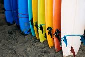 Lot Of Single Fin Surfing Longboard With Surf Leash Ready For Rent. Set Of Multicolored Surf Boards  poster