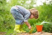 Garden. Sweet Gardener. Boy Digs The Ground In The Garden. Children And Nature. Eko Bio Organic Conc poster