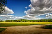 Vibrant landscape with green meadows, trees, blue sky and white clouds in the background with countr poster