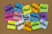 stock photo of hungarian  - Thank you in sixteen languages  - JPG