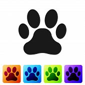 Black Paw Print Icon Isolated On White Background. Dog Or Cat Paw Print. Animal Track. Set Icon In C poster