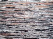 Closeup Old Weathered Plank Of Wood With Visible Deep Crack, Scrape Of Color, And Moldy Stain. Possi poster