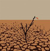 Vector Illustration Of A Lonely Tree In Dry Desert Land. Soil Damage From Drought. Warming Of Dry La poster