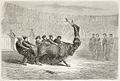 stock photo of animal cruelty  - Portuguese bullfighting old illustration - JPG