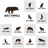 Set Of Wolf Abstract Logo Design Vector Illustration. Wolf Logo Template. Simple Flat Style. Icon Sy poster