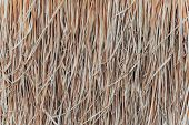 Thatch Roof Background, Hay Or Dry Grass Background. A Thatched Roof, Hay Or Dry Grass Background. G poster
