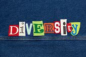 Diversity Word Collage From Cut Out Tee Shirt Letters On Denim, Inclusiveness, Horizontal Aspect poster