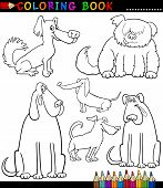 pic of newfoundland puppy  - Coloring Book or Coloring Page Black and White Cartoon Illustration of Funny Purebred or Mongrel Dogs and Puppies - JPG
