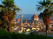 Cathedral Santa Maria del Fiore and bush palm trees. Florence, Italy