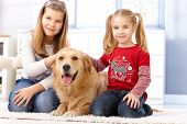 Little sisters kneeling on floor at home, fondling pet golden retriever, smiling. poster