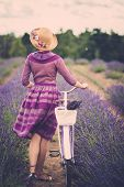 stock photo of lavender field  - Woman in purple dress and hat with retro bicycle in lavender field - JPG