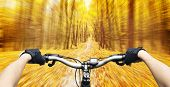 stock photo of descending  - Mountain biking down hill descending fast on bicycle in autumn forest - JPG