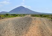 Landscape Nature. Mountains In The Distance. Road And Trees Around. Africa, Kenya.