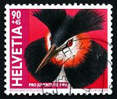 Postage Stamp Switzerland 1998 Great Crested Grebe, Water Bird