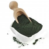 picture of green algae  - Spirulina powder  - JPG