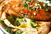 pic of cooked crab  - Closeup view of a cooked crab on a plate - JPG