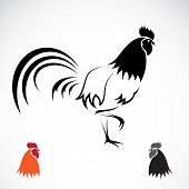 image of cockerels  - Vector image of an cock on white background - JPG