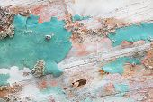 image of shabby chic  - Old wooden shabby chic background with aged calcification of mussels and fossils in turquoise pastel colors - JPG