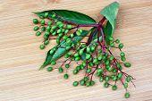 stock photo of elderberry  - Unripe fruits of elderberry on a wooden board  - JPG