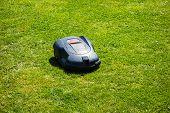foto of grass-cutter  - a robotic lawn mower working on a green grass field - JPG