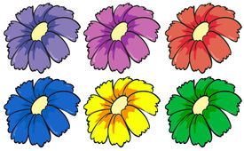 stock photo of six-petaled  - Illustration of the six colourful flowers on a white background - JPG