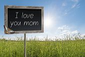 stock photo of i love you mom  - Blank chalkboard on a meadow with text I love you mom - JPG