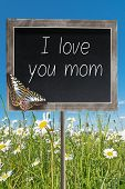 pic of i love you mom  - Blank chalkboard on a meadow with text I love you mom - JPG