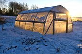 foto of greenhouse  - greenhouse hothouse on farm field on snow and winter morning sunrise - JPG