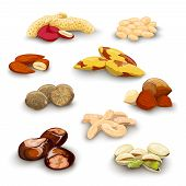 stock photo of brazil nut  - Nuts decorative icons set with peanut almond chestnut pistachio isolated vector illustration - JPG