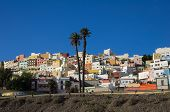 picture of canary  - Colorful residential houses in old uptown of Las Palmas de Gran Canaria the capital city of Canary Islands Spain - JPG