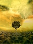 stock photo of grass bird  - loneliness tree in a fantasy field and birds - JPG