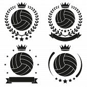 picture of volleyball  - Set of Vintage Volleyball Club Badge and Label with ball - JPG