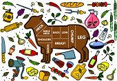 pic of beef shank  - Vector illustration of beef pork lamb and chicken vegetables image bread drinks and cooking tools - JPG