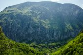 picture of afforestation  - Beautiful view of a high afforested mountains - JPG