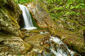 foto of vegetation  - Beautiful landscape with a waterfall and vegetation - JPG