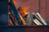 image of firewood  - burning firewood in mongale for barbecue outdoors - JPG