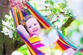 foto of apple orchard  - Child relaxing in hammock - JPG