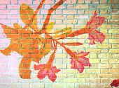 stock photo of desert-rose  - Desert Rose Flower on Red Brick wall texture background - JPG
