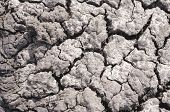 pic of drought  - Dry ground - JPG