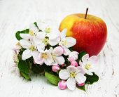 pic of apple blossom  - apple and apple tree blossoms on a wooden background - JPG