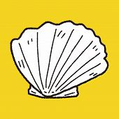 foto of beach shell art  - Shell Doodle - JPG