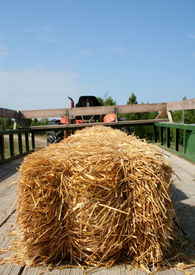 stock photo of hayride  - view from the end of the trailer ready for the big hayride - JPG