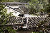Rooftops Garden Of The Humble Administrator Ancient Chinese Houses